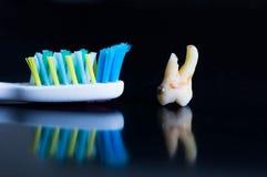 Carie dentaria contro lo spazzolino da denti immagine stock