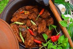 Caril cingalês da galinha com o Kochchi quente quente! Foto de Stock Royalty Free