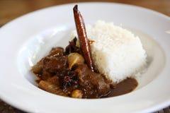 Caril da carne com arroz, alimento tailandês imagem de stock royalty free
