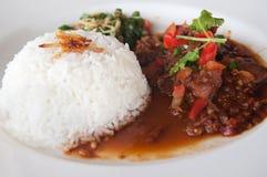 Caril da galinha com arroz Imagens de Stock Royalty Free
