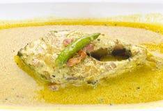 Caril de Hilsha com dominado, muito popular saborosos na Índia e no Bangladesh foto de stock