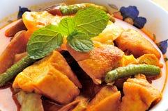 Caril do vegetariano Imagens de Stock