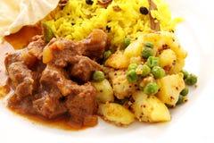 Caril indiano da carne imagem de stock