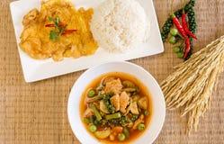 Caril quente e picante da selva com carne de porco e omeleta, arroz cozinhado, estilo tailandês do alimento imagens de stock royalty free