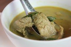 Caril verde com galinha foto de stock