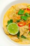 Caril vermelho tailandês Fotos de Stock Royalty Free