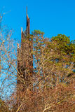 Carillon behind trees in Stone Mountain Park, USA Royalty Free Stock Photo