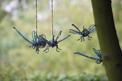 Carillon di vento Swooping della libellula su fondo verde Fotografia Stock