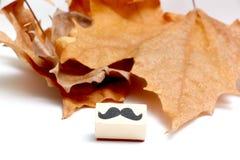 Carimbo de borracha dos bigodes Conceito da conscientização da saúde do ` s dos homens de Movember Fotografia de Stock