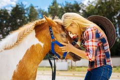 Caring cowboy girl feeling emotional while seeing her cute pony. Seeing pony. Caring cowboy girl feeling extremely emotional while seeing her cute brown and stock photo