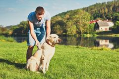 Caring for dog Royalty Free Stock Photos