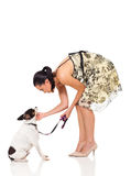 Pet owner dog Stock Images