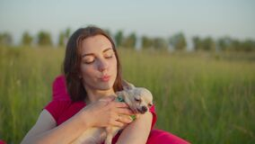 Caring female petting chihuahua dog outdoors