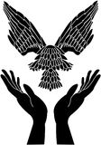 Caring hands and dove in flight. Caring hands and black dove in flight Stock Photos