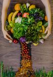 Caring hands embrace a tree of fresh natural groceries. Caring hands embrace a tree of fresh natural products Stock Images