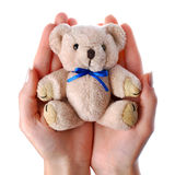Caring hands holding a toy. Caring hands holding teddy bear Stock Photography
