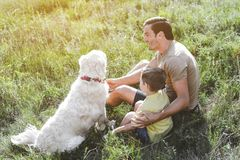 Young carefree family resting outdoors. Caring joyful father sitting with his little son and dog on green sunlit meadow stock image
