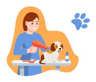 Caring for puppy, pet. Girl dries, combs the dog`s hair. Caring for puppy, pet. Girl dries and combs the dog`s hair. Children with dog. Caring for four-footed stock illustration