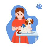 Caring for puppy, pet. Girl dries, combs the dog`s hair. Caring for puppy, pet. Girl dries and combs the dog`s hair. Set of children with dog. Caring for four royalty free illustration
