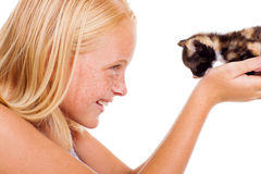 Caring teen kitten Royalty Free Stock Images