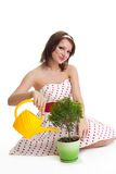 Caring woman water a plant Royalty Free Stock Photography