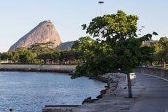 Carioca秋天有一个晴朗的下午 免版税库存照片