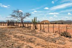 Cariri, ParaÃba, Brasil - em fevereiro de 2018: Paisagem de um fundo simples da vida com uma casa bonita em uma terra seca foto de stock royalty free