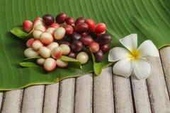 Carissa carandas fruits on banana leave Stock Photos