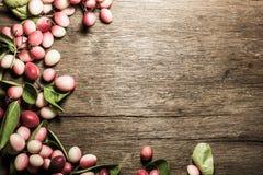 Carissa carandas oder carandas Karonda mit Blättern Stockfotografie
