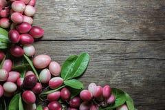 Carissa carandas oder carandas Karonda mit Blättern Lizenzfreie Stockfotos