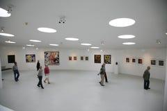 Carl Henning Pedersen Museum Stock Foto's