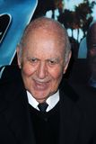 Carl Reiner Stock Photos