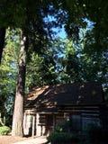 Carlingue dans les bois Photo libre de droits