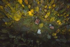 Carlingue dans les bois profonds photographie stock libre de droits