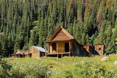 Carlingue de mineurs d'or aux fourchettes le Colorado d'Animas images stock