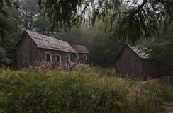 Carlingue de notation autour de forêt images libres de droits