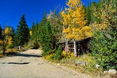 Carlingue Shack de fusil de chasse de rondin dans l'automne avec des feuilles changeantes et une saleté Photo libre de droits