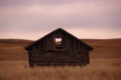Carlingue sur la prairie images libres de droits