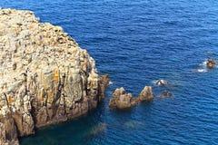 Carloforte - cap Sandalo photographie stock libre de droits