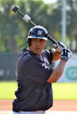 Carlos Beltran. Tampa,Florida – March 25,2015: Carlos Beltran of the New York Yankees works on his batting swing at a practice spring training session on March Stock Photos