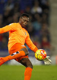 Carlos Kameni of Malaga CF Royalty Free Stock Photography