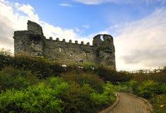 Carlow slott Royaltyfri Bild