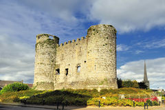 Carlow slott Arkivbild