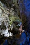 Carlsbad Cavern Royalty Free Stock Image