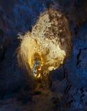 Carlsbad Cavern Stock Photo