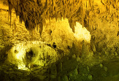 Carlsbad Cavern Royalty Free Stock Image