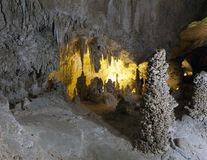 Carlsbad Cavern. National Park in New Mexico stock images
