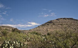 Carlsbad Caverns- Above-Ground Scenery Royalty Free Stock Photos