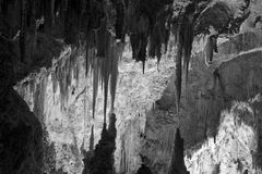 Carlsbad Caverns national park Stock Photography