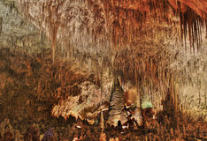 Carlsbad grottor NM Arkivbild